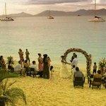 wedding at cactus