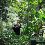 ziplining Manuel Antonio