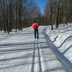 Groomed trails behind the Outdoor Center