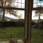 the view from the dining room