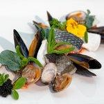 Vispallet van schaal en schelpdieren en verse vis.