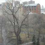 View of Washington Square Park from our room
