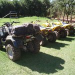 Our machinery...a Suzuki King Quad 400 4x4 and three Suzuki LTZ250's