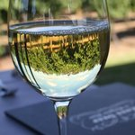 Sip the Chardonnay while overlooking the vinyard