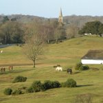 Bolton's Bench Lyndhurst