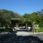 Foto de Key Largo Hammocks State Botanical Site