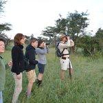 Roelof's walking safari