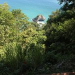 View of cliffside below Congo deck--there be monkeys there!