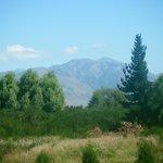 View from Alpine Villa