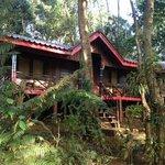 Foto de Tad Fane Resort