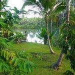 Lake & garden