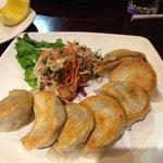 pan fried dumplings with beef