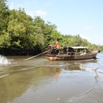 Longtail boat through mangroves