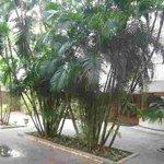 Lawns at Hanu Reddy Residences