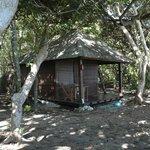 Bigger hut