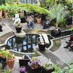 淡路夢舞台温室 奇跡の星の植物館