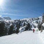 Skiing.