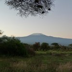 Morning view of Kili from our cottage