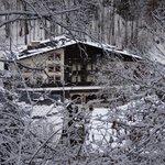 Hotel through the trees on run down