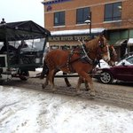 Horse drawn carriages Ice Breaker 2013
