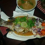 White Snapper steamed...a just delicious alternative