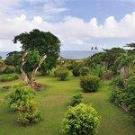 View over the garden to the ocean