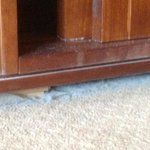 More dust under draws