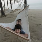 hammocks on the beach for everyone to use