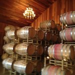 Beautiful barrel room