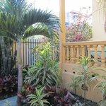 Porch and more gardens