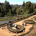 Botanical gardens, Ooty.