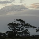 No i Kilimandżro- tu to normalka