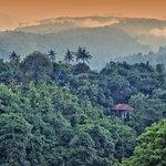 Puri Mangga Overview
