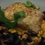 Fresh Caught Mahi Mahi pan seared on carrot cumin puree w/roasted mushrooms &