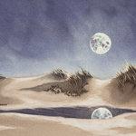 Moonrise on the Dunes