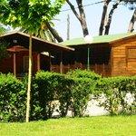 Photo de Camping La Rana Verde