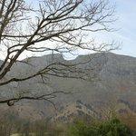 Vista desde el Arpa de Hierba