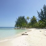 The Beach at Water Caye