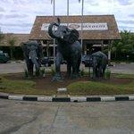 ingresso nirwana