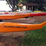 Outrigger Canoes Waiting for Paddlers in Maui