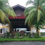 ingresso mayang