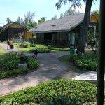 vista bungalow mayang