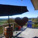 Overlooking Tasman Bay