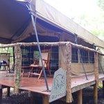 Original Tent (Wombat)
