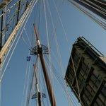 MysticBridge - sailboat passing through