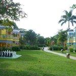 GP Garden side area