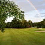 Palm Cove Rainbow