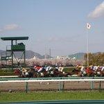 Hanshin Horse Racetrack