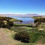 Salar de Tara - Laguna