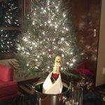 Real pine Christmas tree & Champagne
